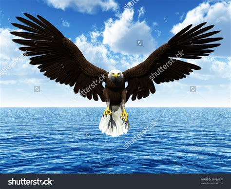 bald and beautiful archikish prism eagle landing front view drawing search bursa