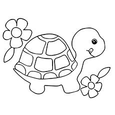girl turtle coloring page free coloring pages of a turtle murderthestout