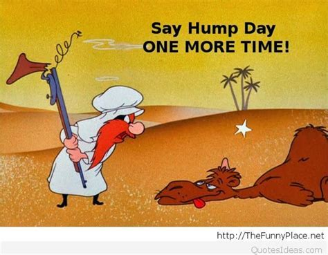 Yosemite Sam Meme - funny happy hump day sayings pictures and cartoons