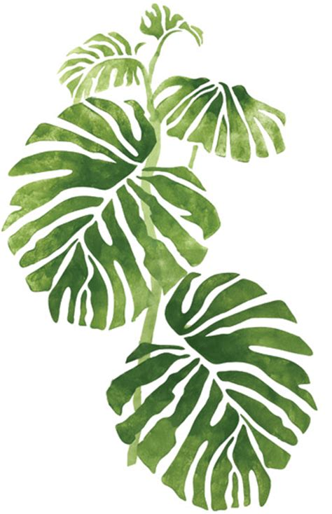 printable rainforest leaves wall mural stencils accent stencils rainforest