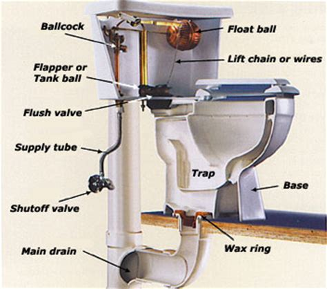 Plumbing Toilet Diagram by Toilet Repair Diagrams Plumbers In Garland