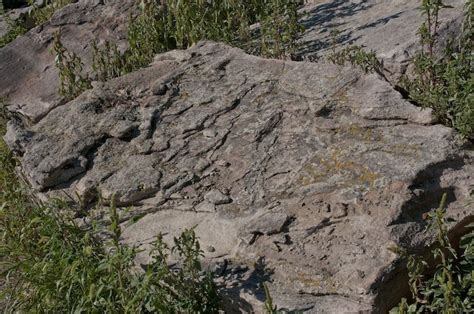 Landscape Rock Denver Colorado Colorado Green Moss High Plains Company Colorado