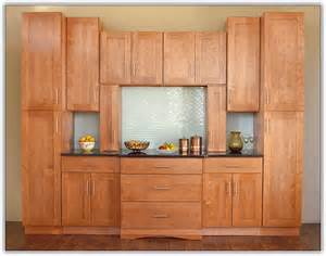 kitchen cabinet style shaker style kitchen cabinets home design ideas