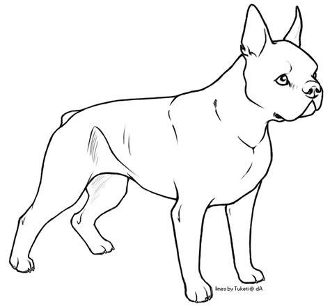 free lines boston terrier by tuketi on deviantart