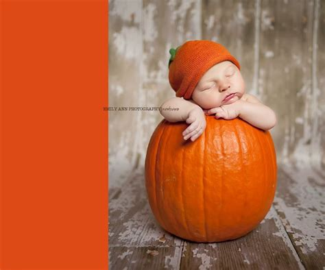 baby s pumpkin pumpkin baby