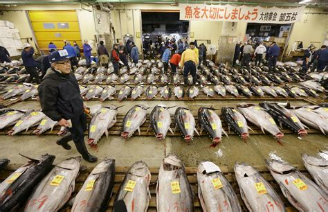 Kitchen Island by New Documentary On Tsukiji Fish Market Captures Essence Of