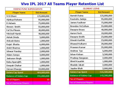 ipl team players list 2017 learn new things vivo ipl 2017 all teams player retention