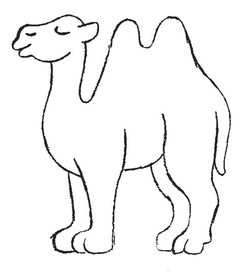 camels coloring pages