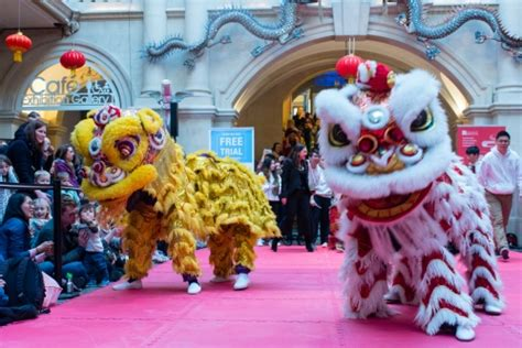 new year 2018 bristol february lunar new year at the museum news
