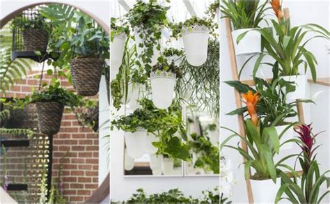 easy indoor garden ideas small space ideas