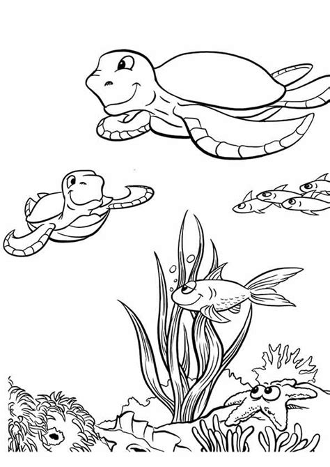 Sea Plants Coloring Coloring Pages Sea Plants Coloring Pages