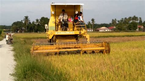 Mesin Potong Rumput Di Padang mesin padi 1545 s menuai padi di padang cempedak ahad 100716