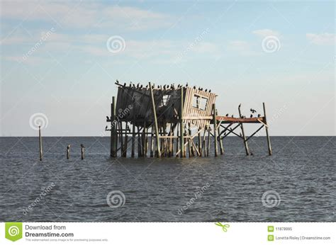 House Plans On Pilings by Abandoned Stilt House In Cedar Key Florida Stock Image