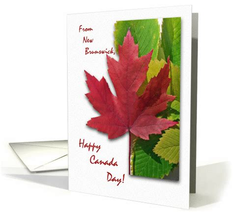 canada day greeting cards 3 kidspressmagazine com canada day from new brunswick red maple leaf card 928529