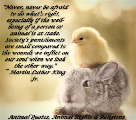 Animal Quotes Quotes And Sayings About Animals Quotes About