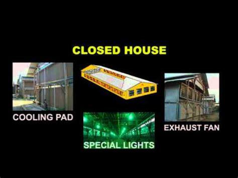 Kipas Blower Kandang kandang ayam closed house kandang tertutup exhaust fan