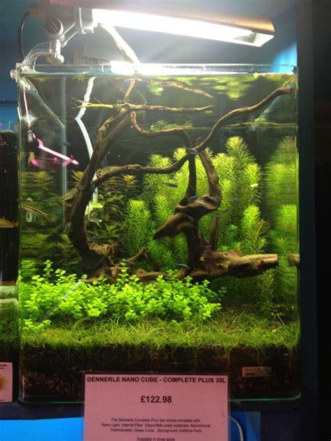 cube aquarium aquascape nano cube aquarium aquascape nano pinterest aquarium
