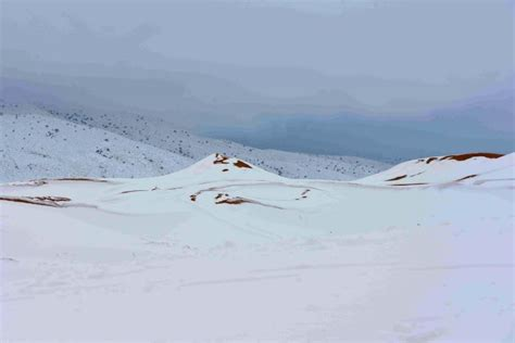 sahara desert snow sahara desert hit by biggest snowfall in living memory