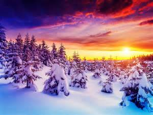 colorful winter wallpaper winter sunrise sky trees colorful nature hd wallpaper 1906896