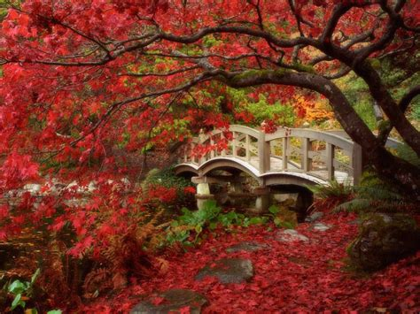 China Garden Mobile Al by Hd Wallpapers Garden Wallpapers