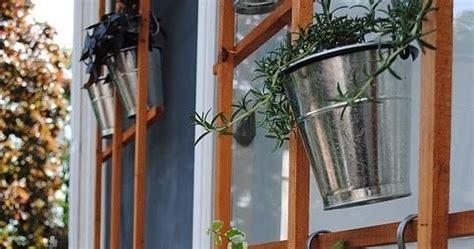 berkebun yuk berkebun tanpa lahan di rumah anda