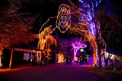 Stoneham Zoo Lights Ma Decoratingspecial Com Stoneham Zoo Lights