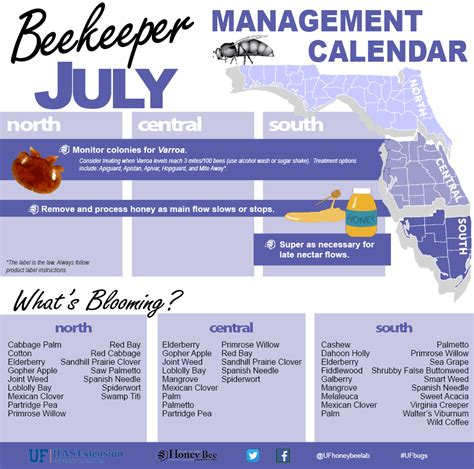 Uf Mba 2017 Summer Calendar by Beekeeper Management Calendar July Uf Ifas Entomology