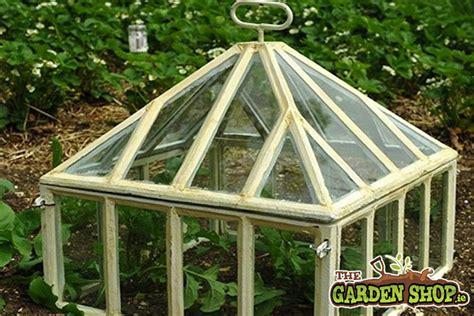 garden cloche howtogardenie