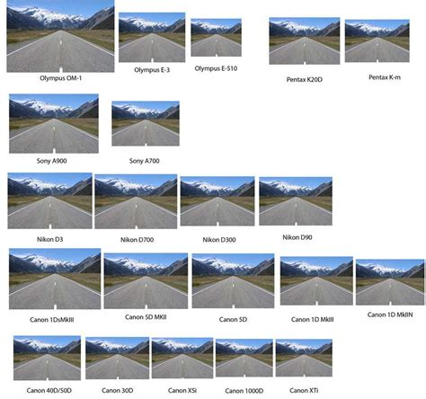 The Comparison by Viewfinder Size Learn Snapsort