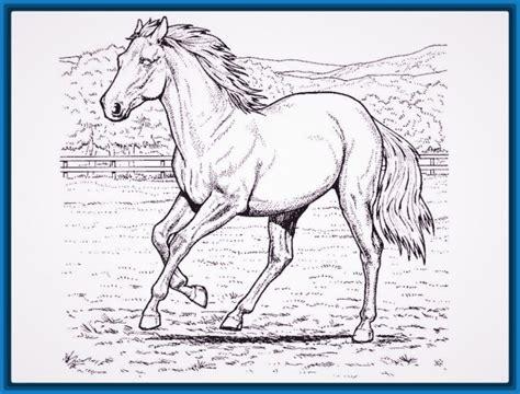 imagenes para dibujar muy dificiles los mejores dibujos para pintar dificiles dibujos de