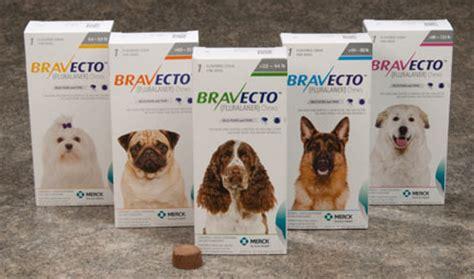 bravecto for dogs merck bravecto 174 chewable tablets for dogs fluralaner