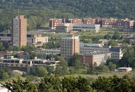 Binghamton Ny Mba by International Business Binghamton