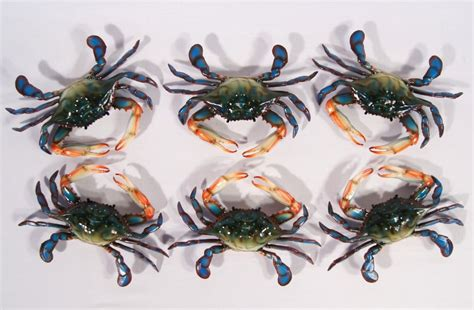 crab decorations for home painted 6 quot maryland blue crab beach tiki bar wall mount
