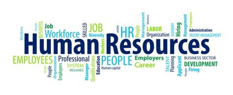 Resume Jobs Objective by Sample Human Resources Resumes