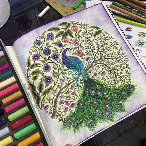 secret garden colouring book instagram de 33 b 228 sta secret garden peacock bilderna p 229