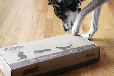 monthly subscription boxes for dogs pawalla monthly all and organic product subscription box milk