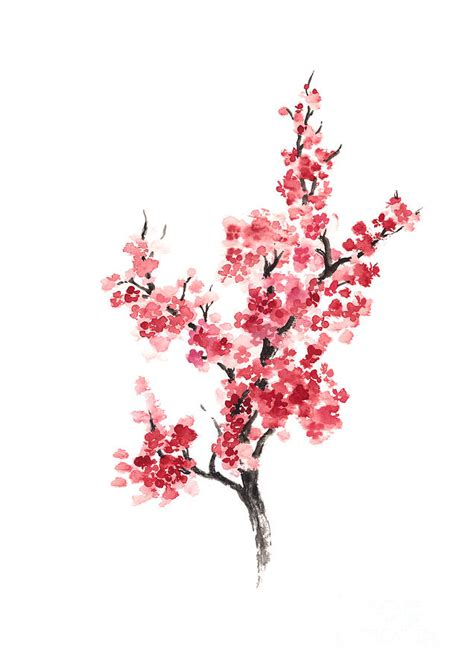 cherry blossom japanese flowers poster painting by joanna