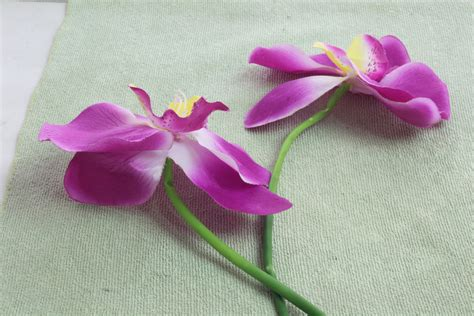 Seide Reinigen by How To Clean Silk Flowers 7 Steps With Pictures Wikihow