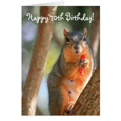 printable birthday cards with squirrels happy 70th birthday squirrel greeting card zazzle