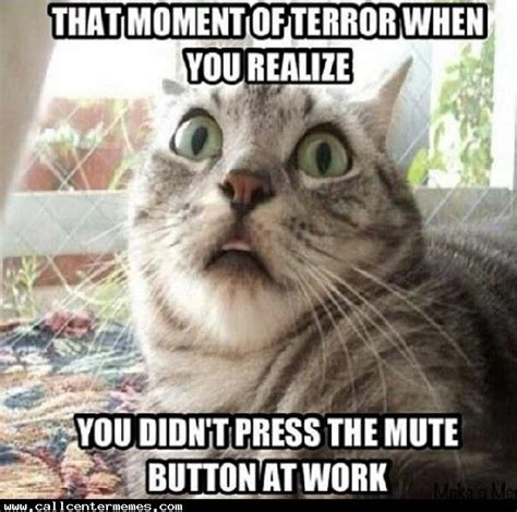 Call Centre Meme - 78 images about call center memes on pinterest