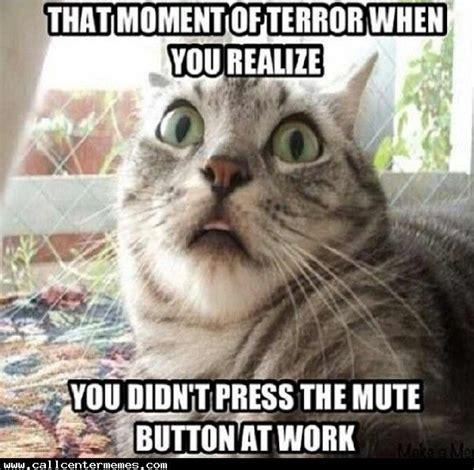 Funny Meme Center - 78 images about call center memes on pinterest