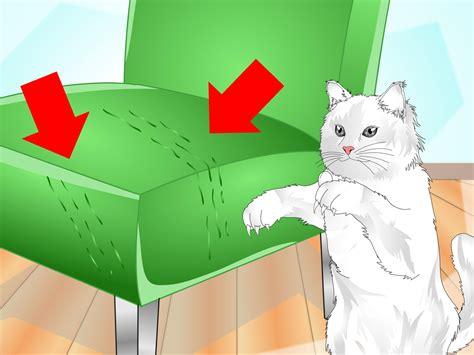 cat scratch post clipart   cliparts