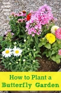 25 best ideas about butterfly garden plants on