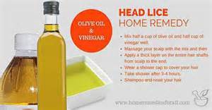 how to treat lice at home 6 home remedies for lice