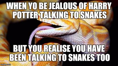 Snake Meme - harry potter snake meme pictures to pin on pinterest
