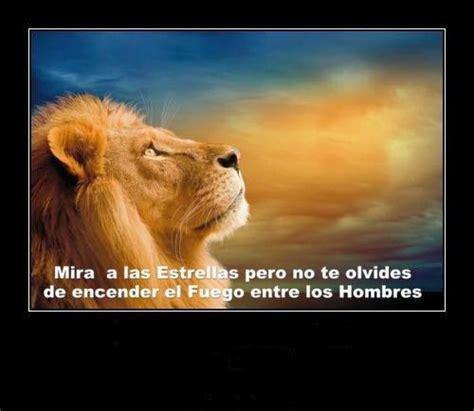 imagenes leones con frases imagenes lindas para compartir fb imagenes de leones con