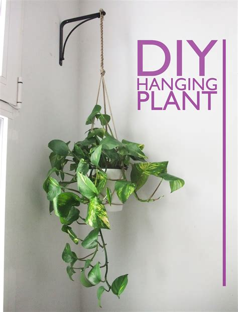 Hanging Plant Diy | i came to dance diy hanging plant holder