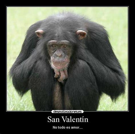 imagenes chistosas por san valentin carteles san valentin mono gracioso amor pareja rota