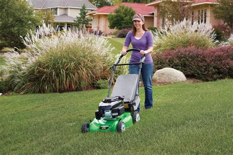 winter lawn care do and don ts the home depot canada