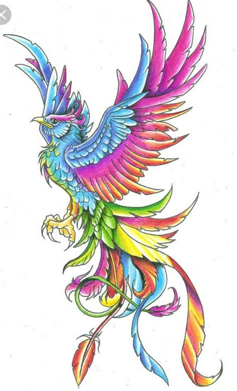 tattoo designs phoenix rising 25 best ideas about drawing on rising